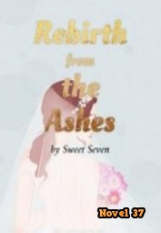 Rebirth From The Ashes - Novel37