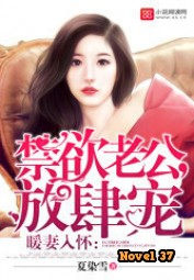 Sweet Wife in My Arms - Novel37