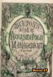The Book of Household Management - Novel37