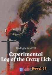 The Experimental Log of the Crazy Lich - Novel37