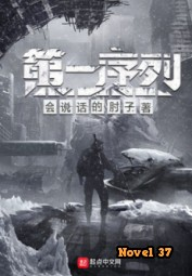 The First Order - Novel37