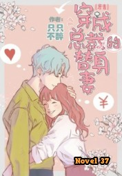 The Male Lead's Substitute Wife - Novel37